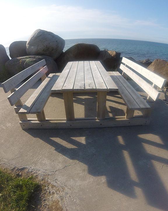 Backrest Picnic Table